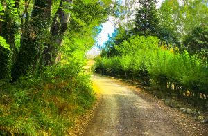 sentier camping Suze
